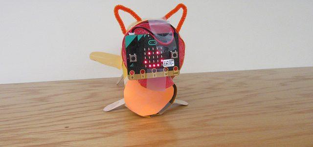 4-H kitty