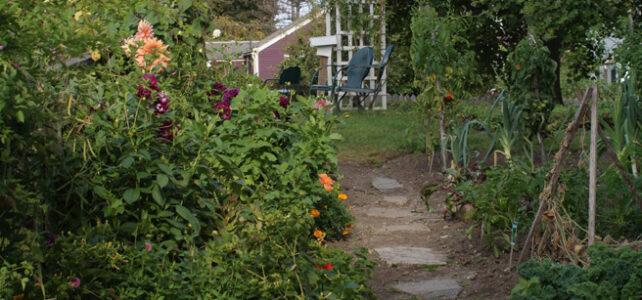 The Heirloom Gardener, on Zoom 9/16
